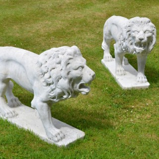 A pair of 19th century carved marble pacing lions