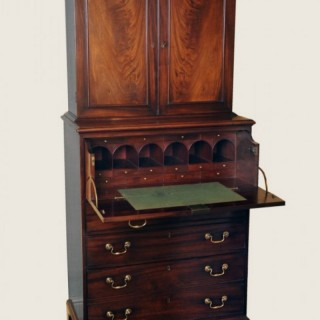 A rare Georgian mahogany collector's cabinet