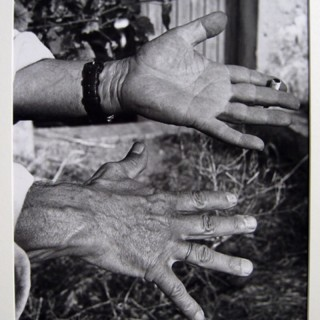 Les Mains (Picasso's hands)