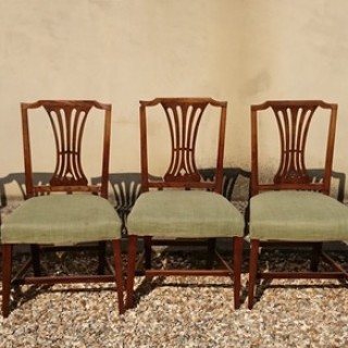 Set of Five Antique DIning Chairs Unusually Made Of Elm