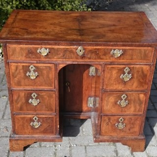 Early 18th Century Estate Desk In Burr Walnut With Feather Banding