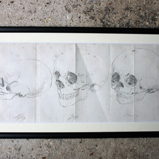Decorative Group of Seven Framed Early Victorian Engravings of Skulls from The Natural History of Man, by James Cowles Prichard c.1848