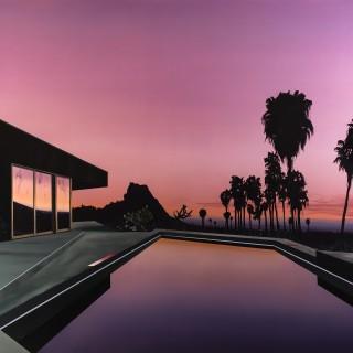 Palms at Daybreak