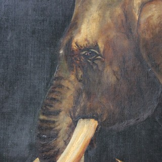 Charming Edwardian Period English School Oil on Canvas of an African Elephant Dated to 1906 by E Whiteley