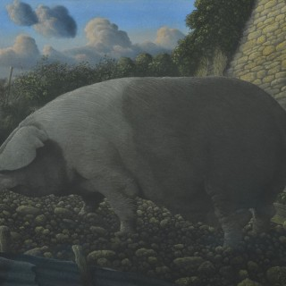 James Lynch (Born 1956) - Saddleback Sow