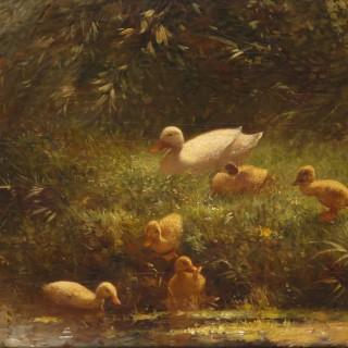 Constant Artz.   Ducks and ducklings