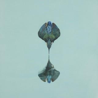 Reflection - Turquoise