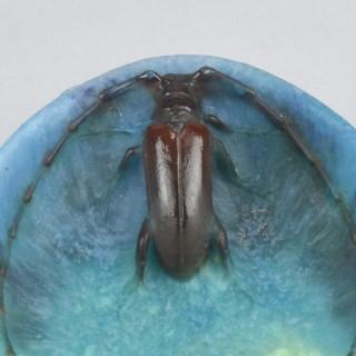 'Beetle Vide Poche' Art Nouveau pate de verre glass by A Walter
