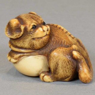 A CHARMING JAPANESE EDO PERIOD IVORY NETSUKE OF A PUPPY DOG CLUTCHING A BALL