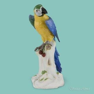 Meissen Large Study of a Macaw with Cherries, c.1880