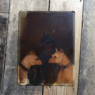 A Quite Wonderful 19thC English School Oil on Board Study of Two White Terriers & One Manchester Terrier