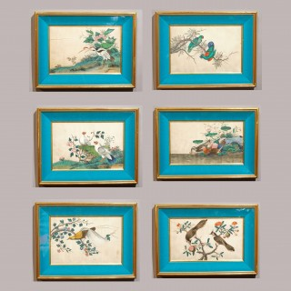 A Set of 6 Mid 19th Century Chinese Rice Paper Paintings of Exotic Birds