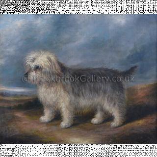 Harry, Portrait Of A Terrier
