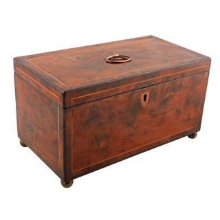 Georgian Yew Wood Tea Caddy