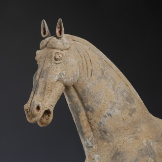 Large Chinese Tang Dynasty Pottery Horse