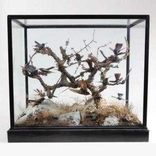 VICTORIAN DIORAMA OF HUMMING BIRDS