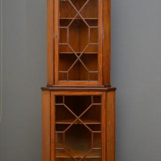 Edwardian Floor Standing Corner Cupboard