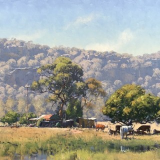 Seeking Shade, Near Wisemans Ferry by Warwick Fuller