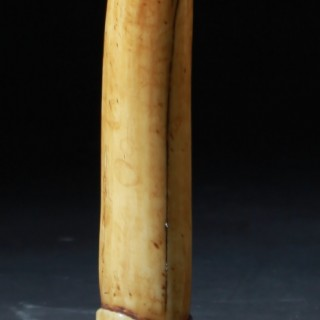 Medical Chinese Rare Carved ivory Phallus