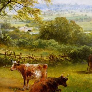 A Derbyshire Farm