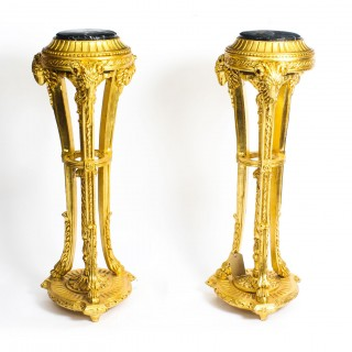 Antique Pair Giltwood Pedestals Torcheres early 20th C