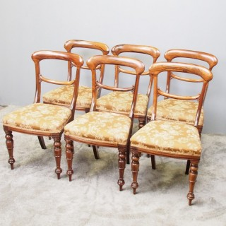 Set of 6 Rosewood William IV Dining Chairs