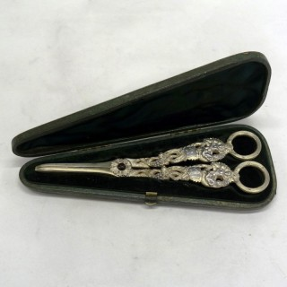 Silver Grape Scissors in a Box