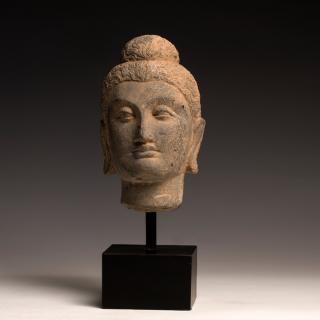 Fine Gandharan Stone Head of a Buddha