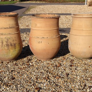 A group of three large  French  Terracotta pots