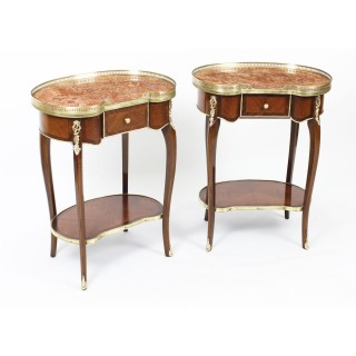 Antique Pair Kidney Occassional Tables / Bedside Cabinets 19th Century