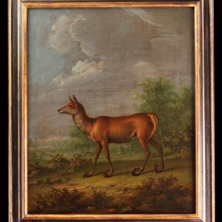 German Oil on Canvas of a White Tailed Deer