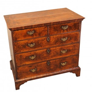 18th Century English Burr Elm And Laburnum Antique Chest Of Drawers