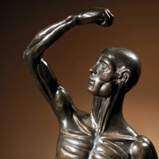 A Large Impressive Ecorche  Sculpture Of A Standing Man, Bronze, circa: 1770,