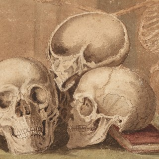 Interesting Watercolour and Brown Ink on Paper Anatomical Study of Five Human Skulls
