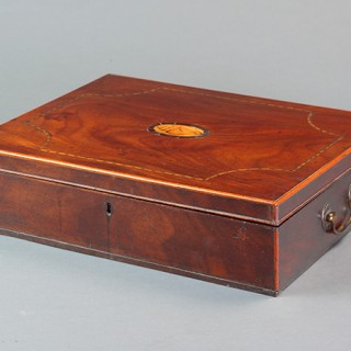 Regency Collection of Shells and Naturalia contained in a mahogany box