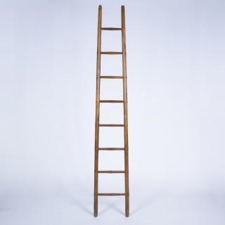 Library Ladder Simulating Bamboo