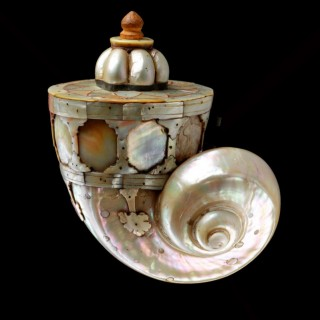 Rare Large Nautilus Shell Indian Mughal Gujarati Gunpowder Flask 'Barutdan'