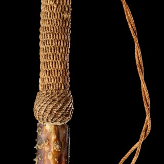 Rare Sailors Work Slavers Whip a Natural 'Cat of Nine Tails' Fashioned from the Long Spiked Tail of a Giant Atlantic Eagle Ray 'Myliobatis Aquila'
