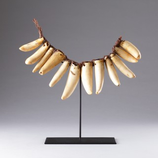 Rare Early Fijian Sperm Whale Tooth Necklace 'Vuasagale'