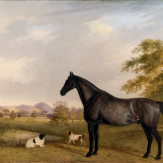 Horse & Dogs in a Landscape