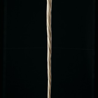 Superb Scrimshaw Narwhal Tusk Walking Cane with T Shaped Handle