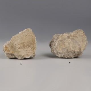 Plaster Fragments from Pompeii