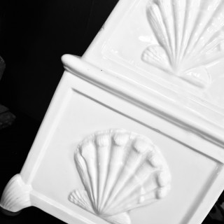 A CASA PUPO SEA SHELL LAMP