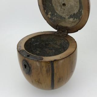 Georgian  Pumpkin  Tea Caddy