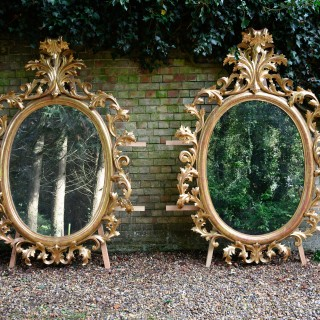 Monumental Pair of (7.5Ft) 19th Century Oval Florentine Carved Gilt Wood Mirrors