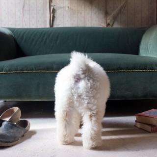 A Late Victorian Green Velvet Upholstered Chesterfield Sofa c.1900