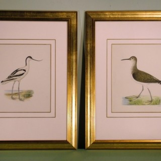 Pair of late 19th Century Bird Prints after W von Wright