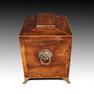 George IV Mahogany Sarcophagus Shaped Tea Caddy