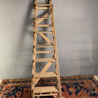 Early 20th Century Ladder