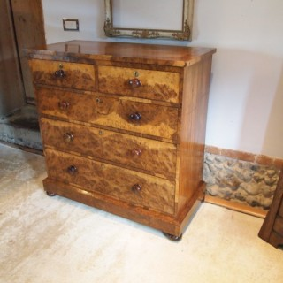 Chest of drawers rare Victorian Burr Oak  c1850